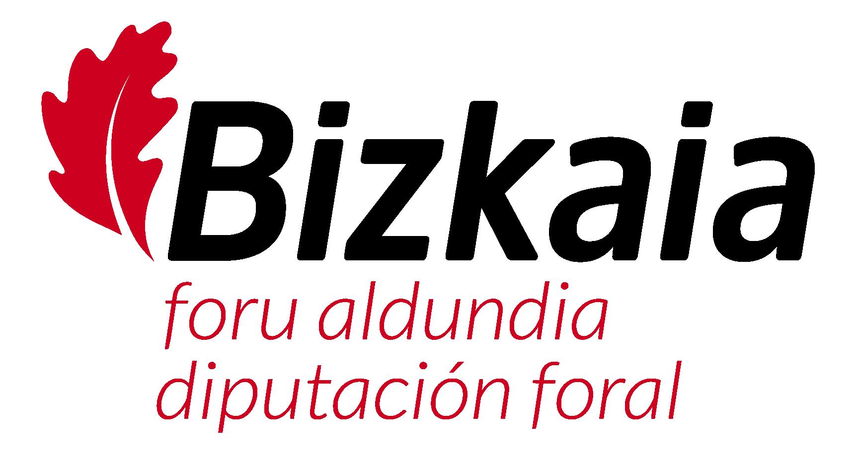 Diputacion_Bizkaia_NUEVO